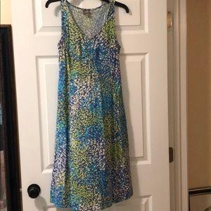 J. Jill 10 Dress